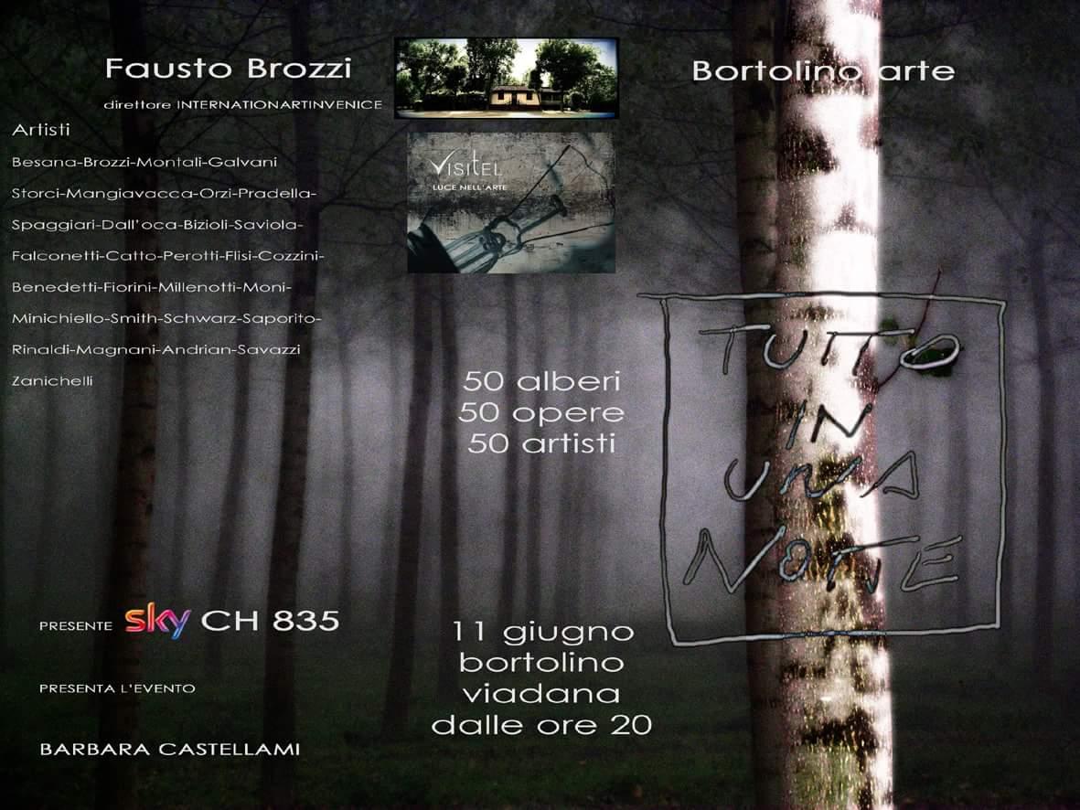 monica catto 50 alberi opere artisti